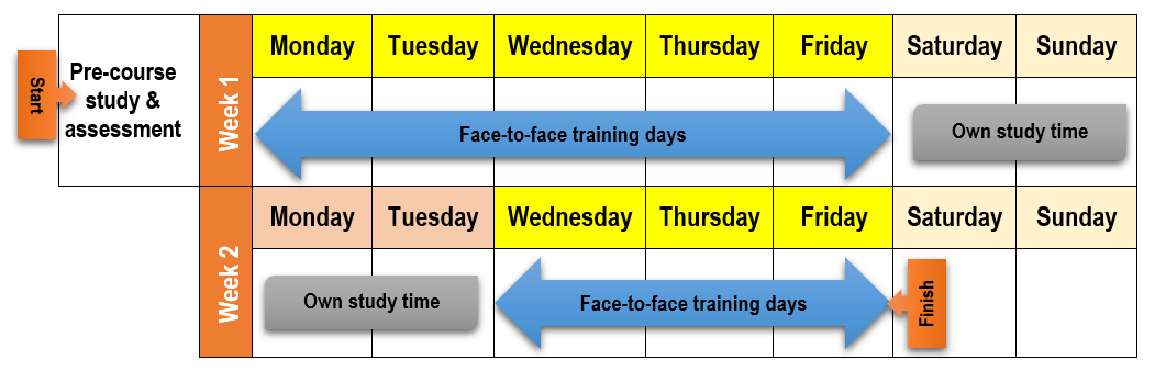 TAE course schedule